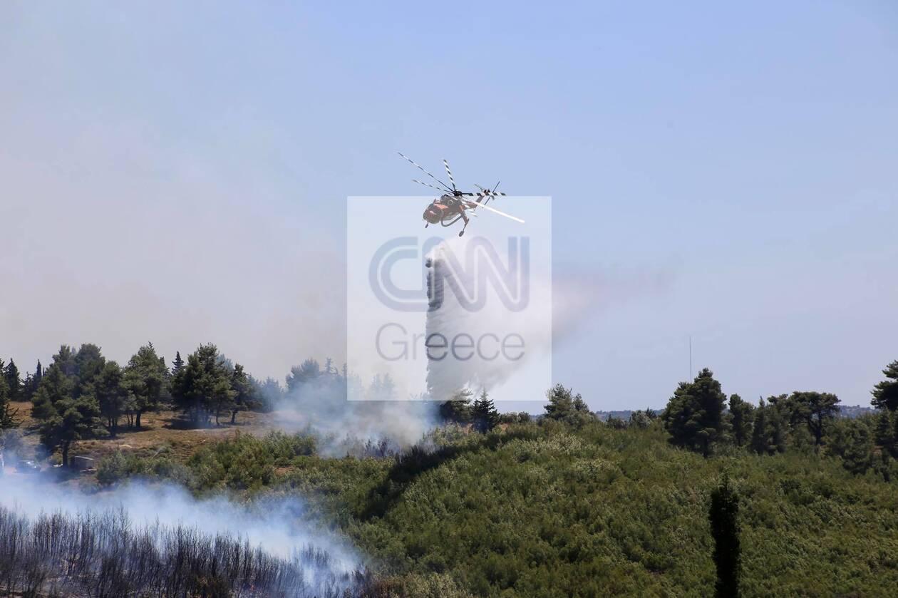 https://cdn.cnngreece.gr/media/news/2021/07/10/273593/photos/snapshot/fotia-varnava1.jpg