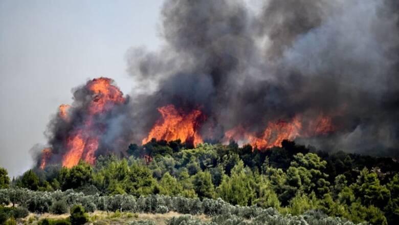 Πυρκαγιές: Σε ποιες περιοχές υπάρχει υψηλός κίνδυνος την Κυριακή
