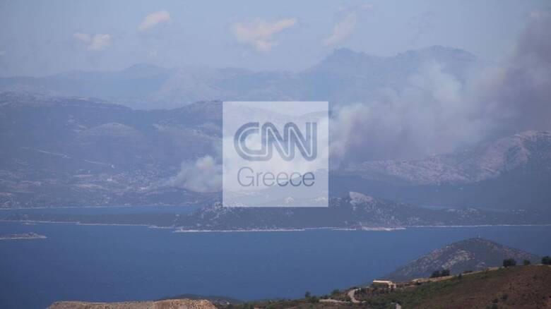 Πυρκαγιά στην Εύβοια: Μάχη με τον χρόνο για την κατάσβεση των εστιών στα Νέα Στύρα