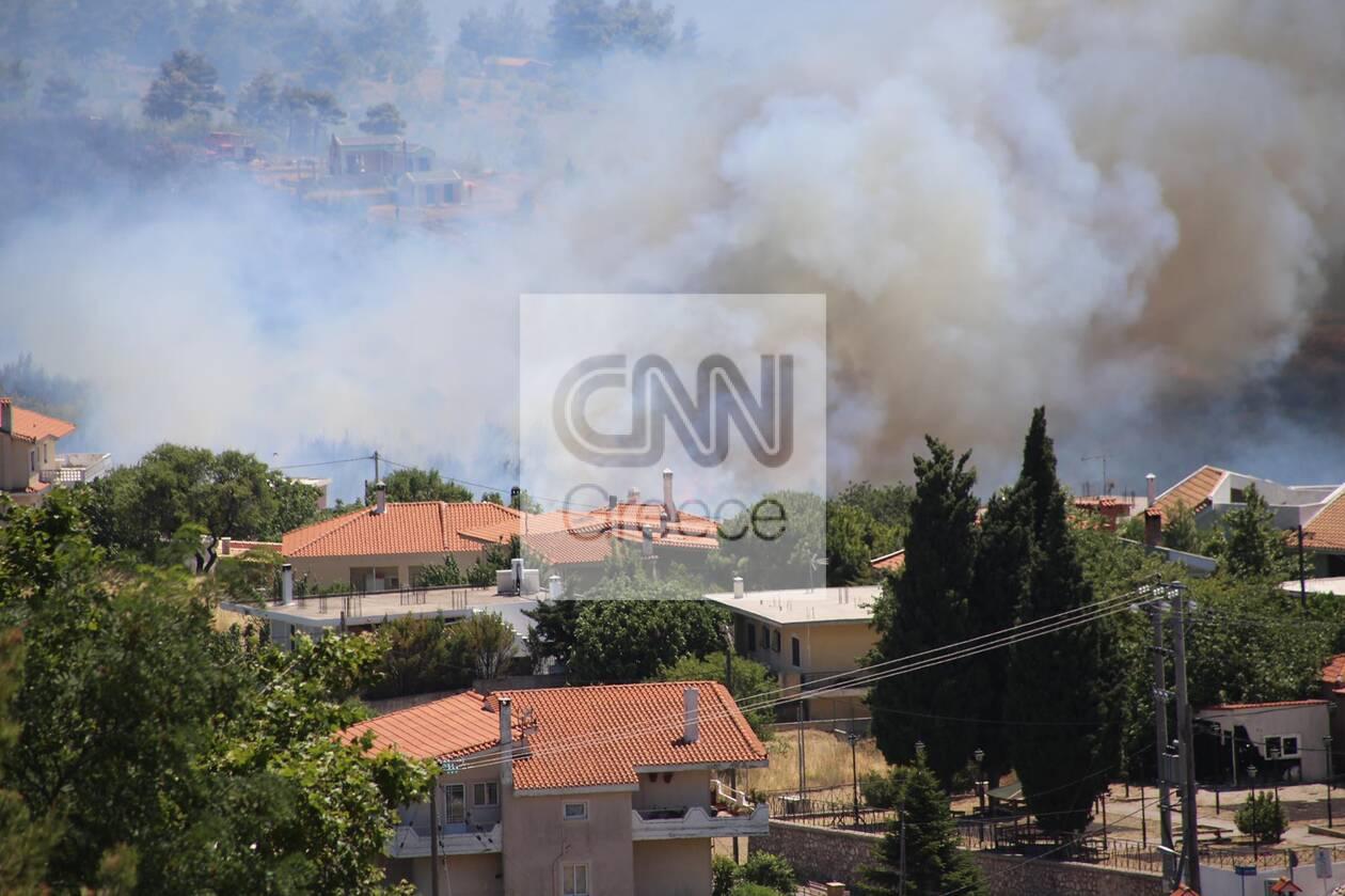 https://cdn.cnngreece.gr/media/news/2021/07/10/273607/photos/snapshot/fotia-varnava0_n-75.jpg