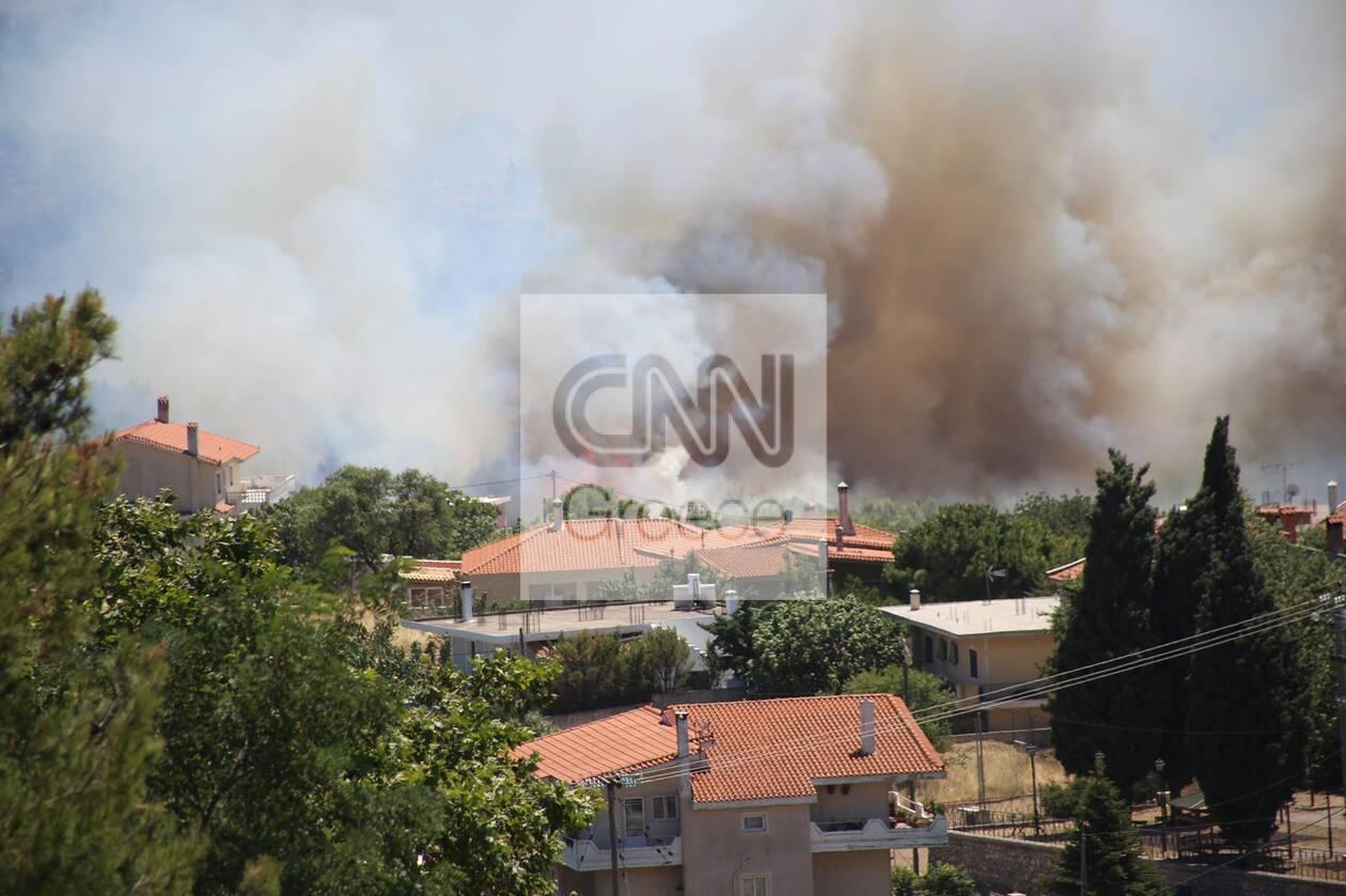 https://cdn.cnngreece.gr/media/news/2021/07/10/273607/photos/snapshot/fotia-varnava_n-80.jpg