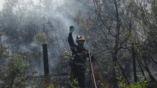 Πυρκαγιές: Περιορίστηκαν τα μέτωπα σε Εύβοια και Βαρνάβα - Ολονύχτια επιφυλακή