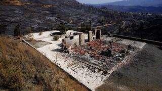 Κύπρος: Στο Κάιρο οι σοροί των τεσσάρων Αιγυπτίων που χάθηκαν στη φονική πυρκαγιά