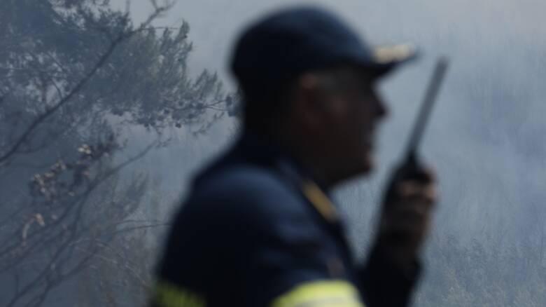 Χωρίς τέλος τα πύρινα μέτωπα: Φωτιά και στη Νικήτη Χαλκιδικής