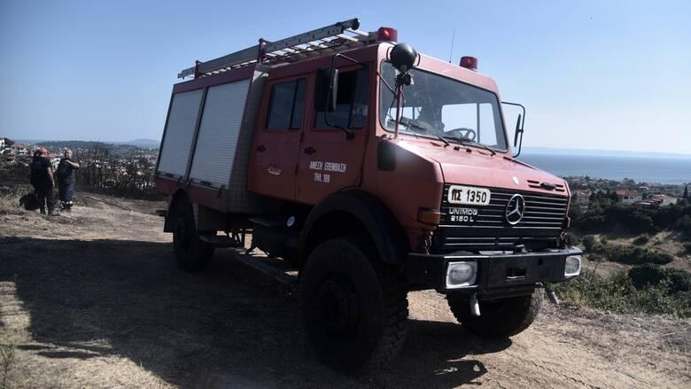Υπό έλεγχο η φωτιά στα Στύρα Ευβοίας - 58 οι δασικές πυρκαγιές σήμερα