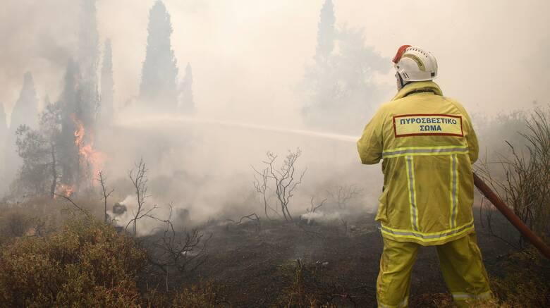 Θεσσαλονίκη: Μάχη με τις φλόγες στο Σέιχ Σου - Εκκενώθηκε ξενοδοχείο