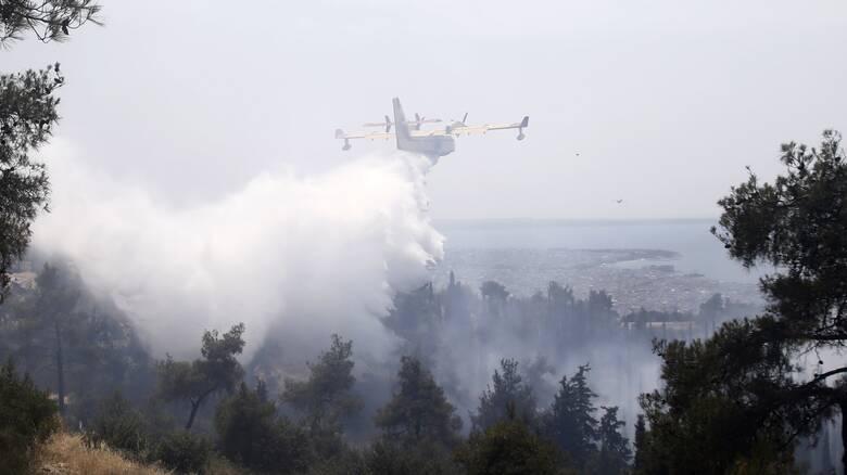 Θεσσαλονίκη: Σε ύφεση η φωτιά στο Σέιχ Σου - Κάηκαν 90 στρέμματα δάσους