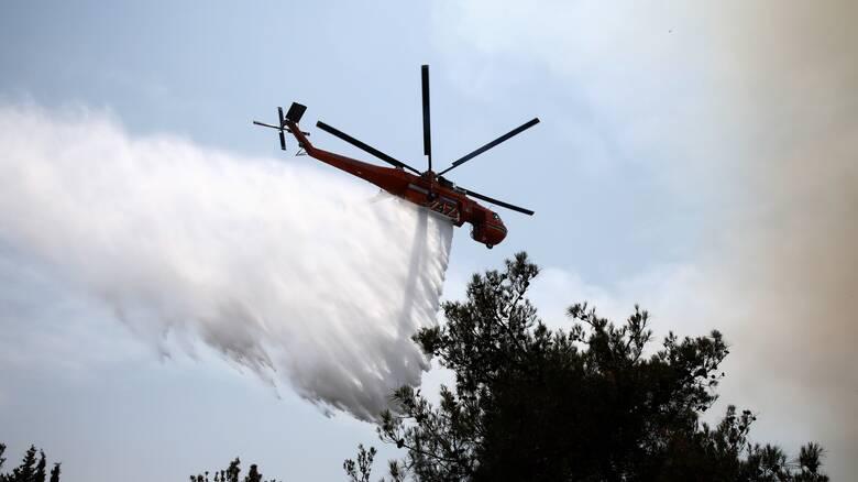 Φωτιά Χανιά: Μαίνεται το πύρινο μέτωπο στο Σέλινο