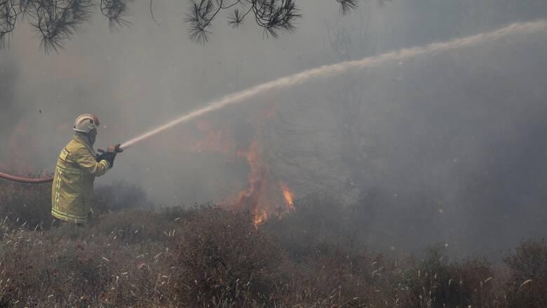 Φωτιά Χανιά: Σε ύφεση το πύρινο μέτωπο στο Σέλινο