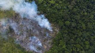 Το δάσος του Αμαζονίου εκπέμπει περισσότερο διοξείδιο του άνθρακα απ' όσο απορροφά, λέει έρευνα