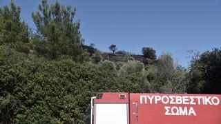 Φωτιά στην περιοχή Βουρλιώτες στη Σάμο - Επί τόπου η πυροσβεστική