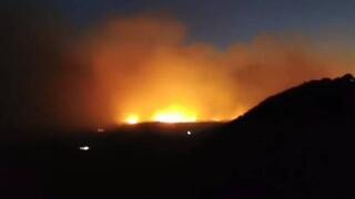 Φωτιά στη Σάμο: Ολονύχτια μάχη με τις φλόγες - Εκκενώθηκαν προληπτικά ξενοδοχεία και σπίτια