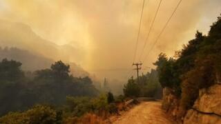 Φωτιά στη Σάμο: Μαίνονται οι φλόγες - Στάχτη χιλιάδες στρέμματα