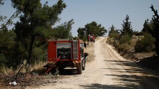 Σάμος: Υπό πλήρη έλεγχο τέθηκε η πυρκαγιά