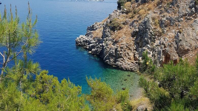 Η βιοποικιλότητα στην Ελλάδα: 171 είδη κινδυνεύουν με εξαφάνιση