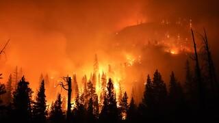 ΗΠΑ: Οι πυρκαγιές συνεχίζουν την ξέφρενη πορεία τους στις δυτικές ΗΠΑ