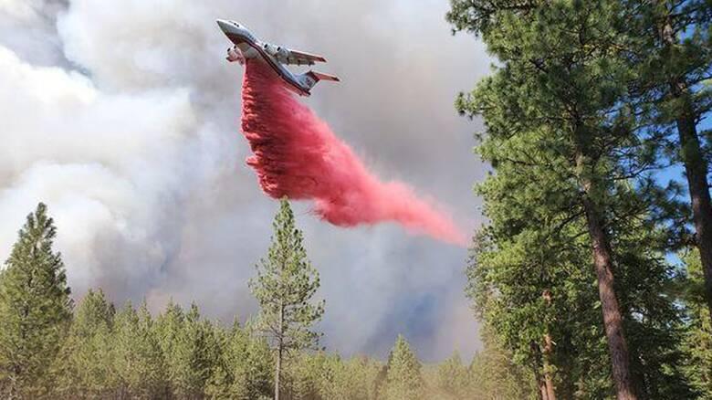 Καναδάς: Σε κατάσταση έκτακτης ανάγκης η Βρετανική Κολομβία λόγω πυρκαγιών - Χιλιάδες εκτοπισμένοι