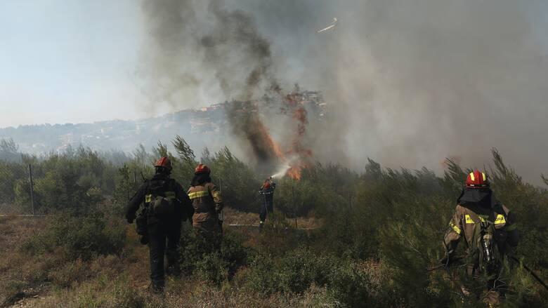 Φωτιά στη Δουμπιά Χαλκιδικής: Επί τόπου δυνάμεις της Πυροσβεστικής