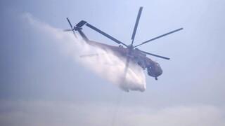 Μεγάλη φωτιά στην Κάρυστο - Έφτασε κοντά σε σπίτια