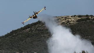 Πενήντα έξι δασικές πυρκαγιές σε ένα εικοσιτετράωρο σε όλη την Ελλάδα