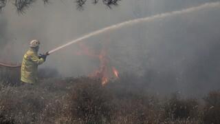 Σε ύφεση η πυρκαγιά στο Λασίθι - Συνεχείς αναζωπυρώσεις, παραμένουν ισχυρές δυνάμεις