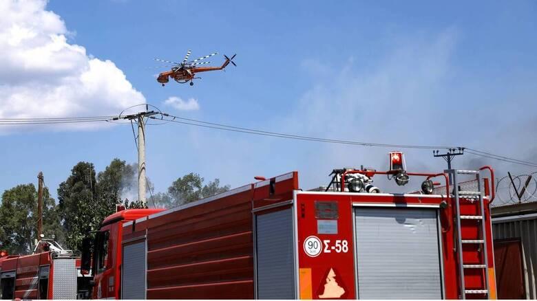 Φωτιά στο Καλέντζι Κορινθίας: Ισχυρές δυνάμεις της Πυροσβεστικής στη μάχη με τις φλόγες