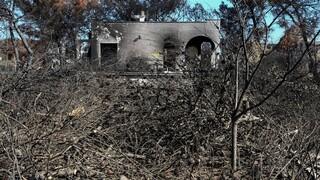 Φωτιά στο Μάτι: Αντιπαράθεση ΝΔ και ΣΥΡΙΖΑ για τη θλιβερή επέτειο