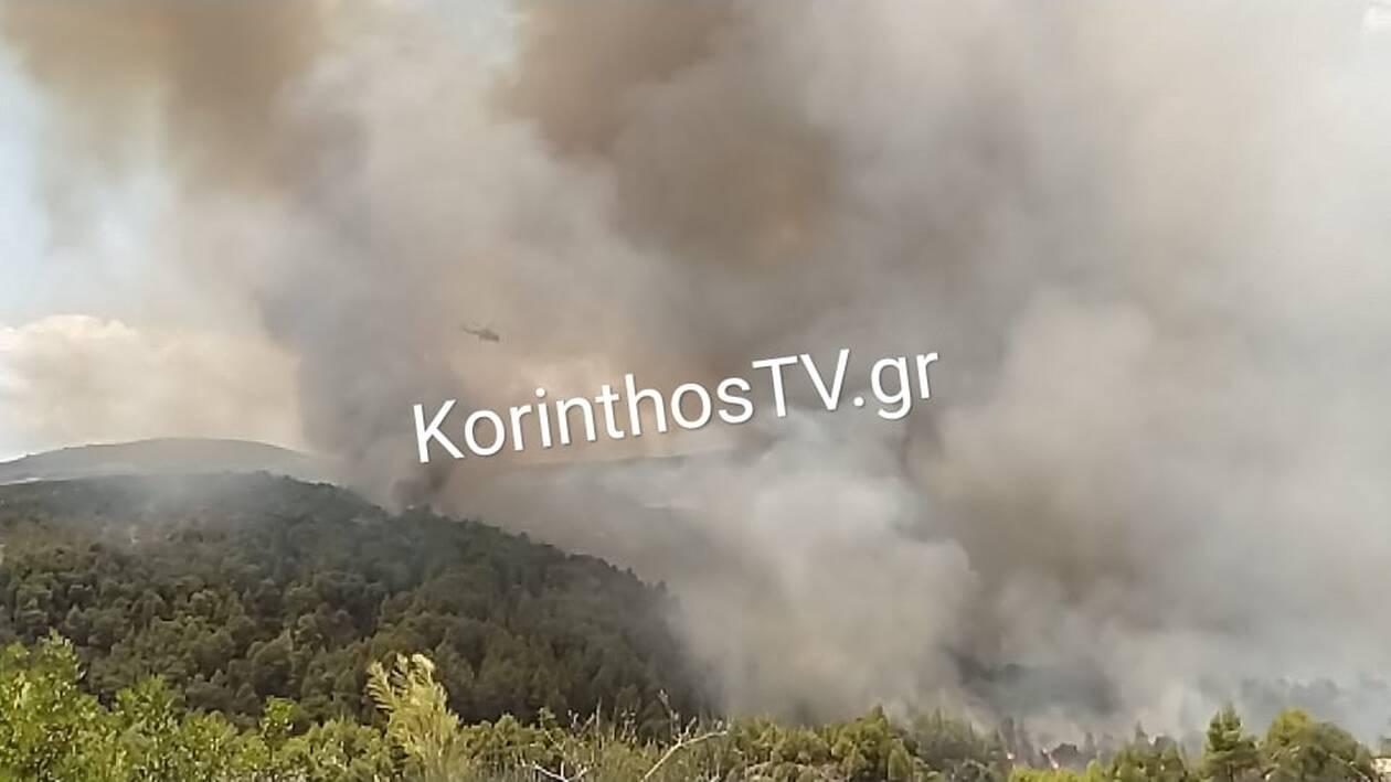 https://cdn.cnngreece.gr/media/news/2021/07/23/275342/photos/snapshot/kalentzi2.jpg