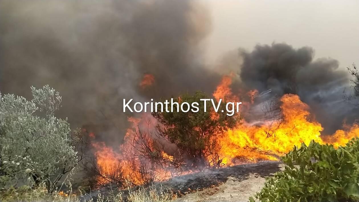 https://cdn.cnngreece.gr/media/news/2021/07/23/275342/photos/snapshot/kalentzi3.jpg
