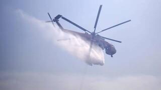 Kίνδυνος πυρκαγιάς : Οι περιοχές που ανησυχούν την Πολτική Προστασία σήμερα Κυριακή