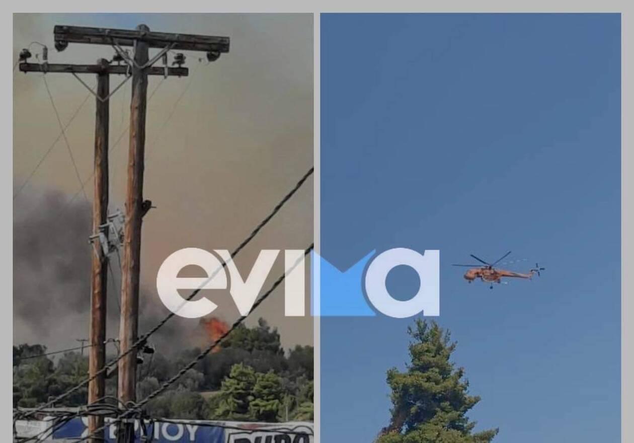 https://cdn.cnngreece.gr/media/news/2021/07/24/275426/photos/snapshot/evia-1.jpeg