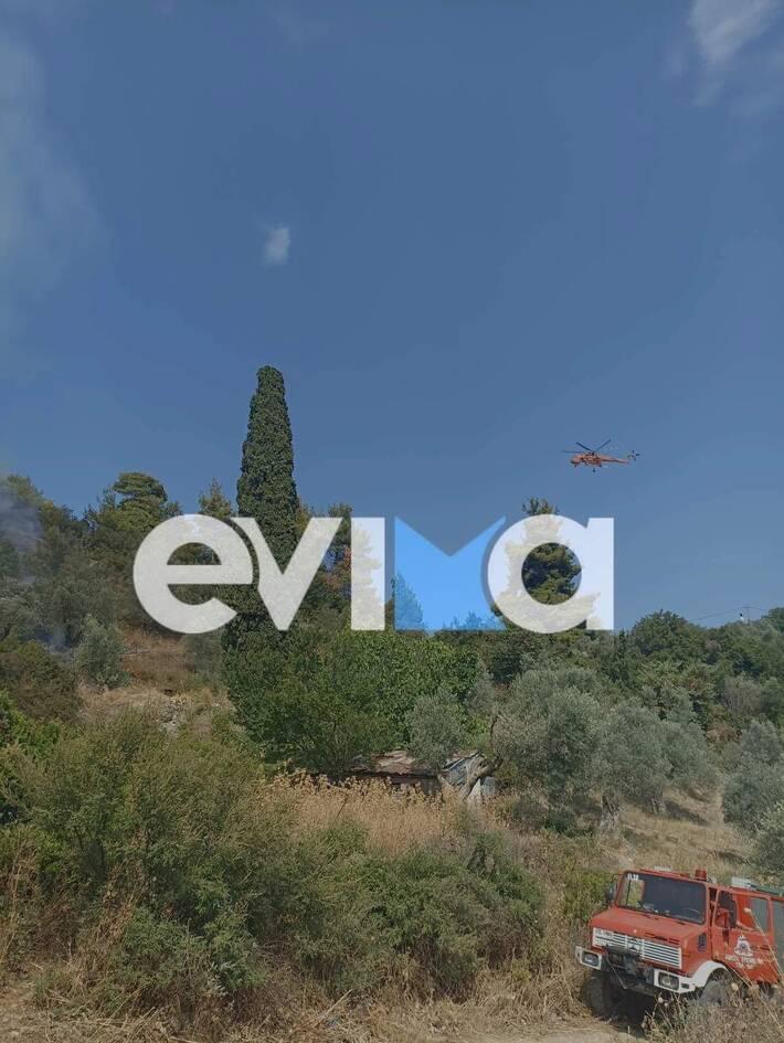 https://cdn.cnngreece.gr/media/news/2021/07/24/275426/photos/snapshot/evia-2.jpeg