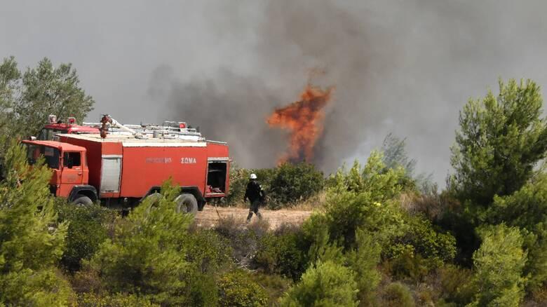 Φωτιά - Πυροσβεστική: 40 δασικές πυρκαγιές μέσα σε ένα εικοσιτετράωρο