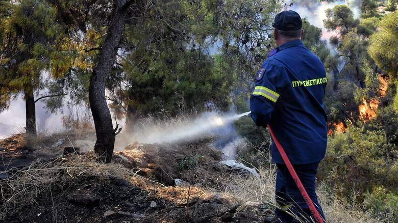 Φωτιά στην περιοχή Άγιος Νικόλαος στην Σαλαμίνα