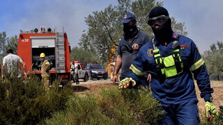 Υπό μερικό έλεγχο η πυρκαγιά στη Σαλαμίνα
