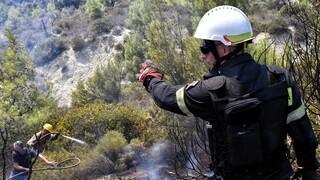 Φωτιά στην περιοχή Νερατζούλες στη Ζάκυνθο