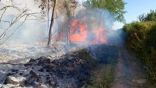 Σε κατάσταση έκτακτης ανάγκης η Σαρδηνία από τις πυρκαγιές