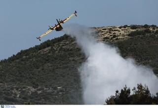 Φωτιές σε Ρόδο και Αίγιο: 45 δασικές πυρκαγιές το τελευταίο 24ωρο