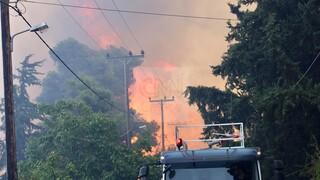 Μεγάλη φωτιά στη Σταμάτα - Στις αυλές των σπιτιών οι φλόγες - Πυρκαγιά και στον Βύρωνα