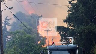 Φωτιά στη Σταμάτα: Μήνυμα από το 112 - «Παραμείνετε σε ετοιμότητα»
