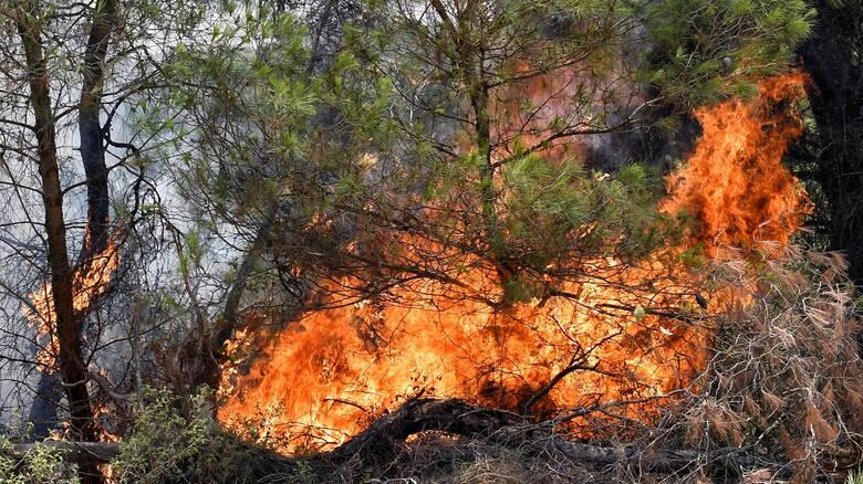 Πολύ υψηλός ο κίνδυνος πυρκαγιάς για την Τετάρτη σε αρκετές περιοχές