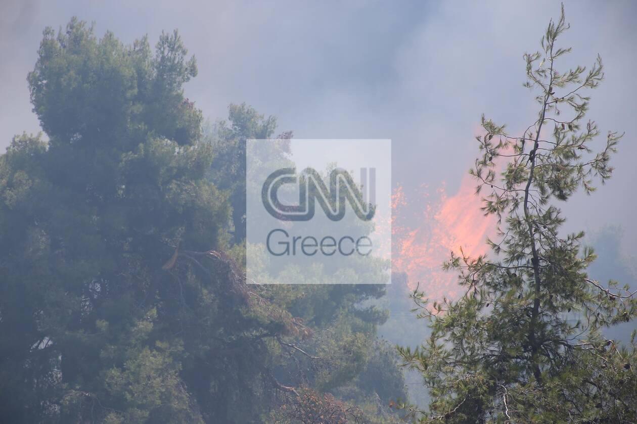 https://cdn.cnngreece.gr/media/news/2021/07/27/275769/photos/snapshot/stamata2.jpg