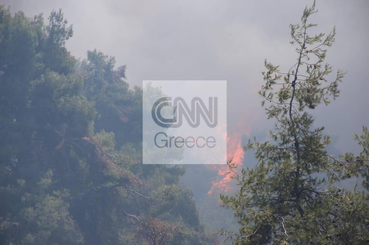 https://cdn.cnngreece.gr/media/news/2021/07/27/275769/photos/snapshot/stamata3.jpg