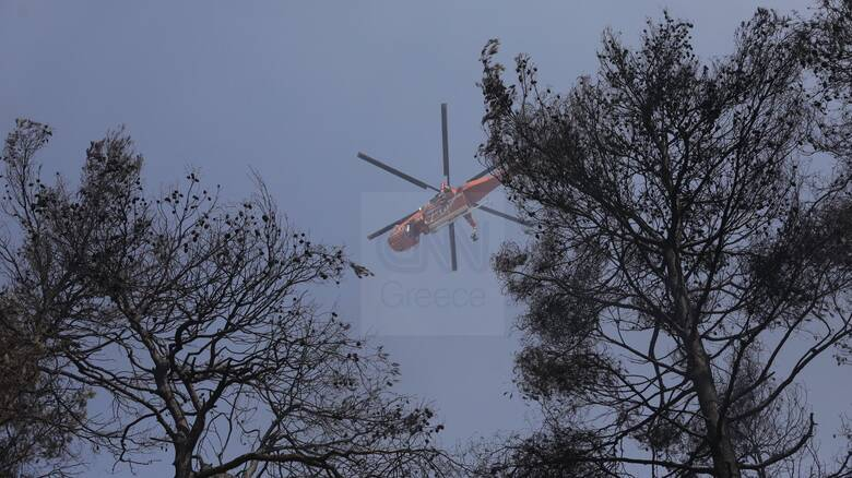 Φωτιά στη Σταμάτα: Τέσσερις προσαγωγές υπόπτων - Τα ενδεχόμενα που ερευνούν οι διωκτικές αρχές