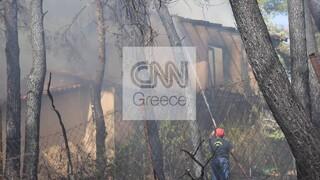 Φωτιά στο Διόνυσο - ΠΟΕΔΗΝ: Ελαφρά τραυματίες μεταφέρθηκαν σε ΚΑΤ και «Αγία Όλγα»