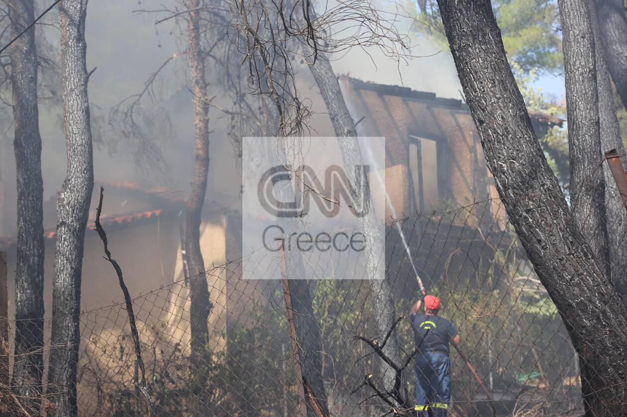 https://cdn.cnngreece.gr/media/news/2021/07/27/275828/photos/snapshot/fotia-dionysos.jpg