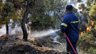 Σε ποιες περιοχές είναι αυξημένος ο κίνδυνος για πυρκαγιά σήμερα