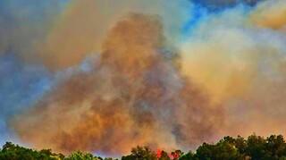 Φωτιά σε δασική έκταση στο Κορωπί