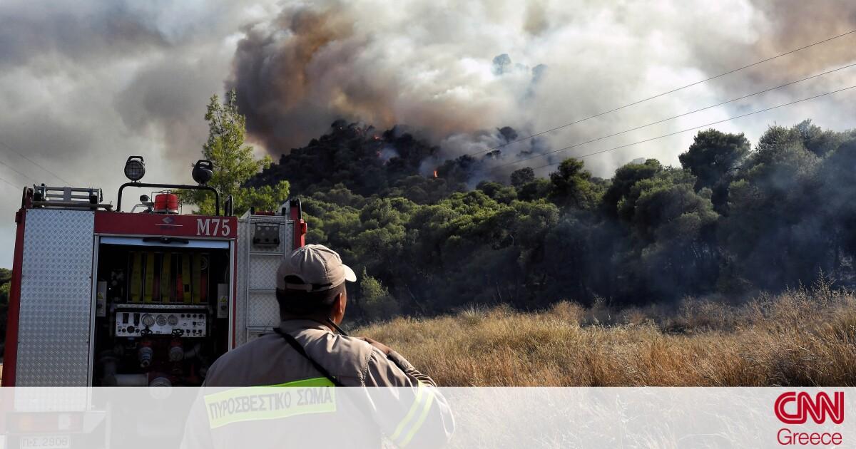 Πυρκαγιά σε εξέλιξη στη Δροσιά Αχαΐας - CNN.gr
