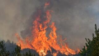 Φωτιά στην Πάτρα: Εκκενώνεται με εντολή της πυροσβεστικής η κοινότητα Σουλίου